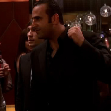 Sam Nazarian in Entourage